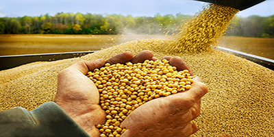 ERP Applications in Food Raw Material Industry